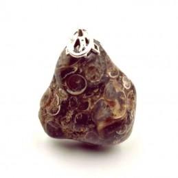 Pendentif Agate fossile ou Turritelle
